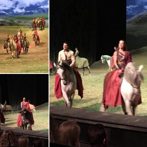 The horses are the real stars of the Odysseo show