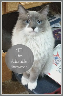 Yeti the adorable snowman