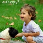 Mom Can I Have a Puppy? @AdriansCrazyLif Straight talk about kids and pet responsibilities