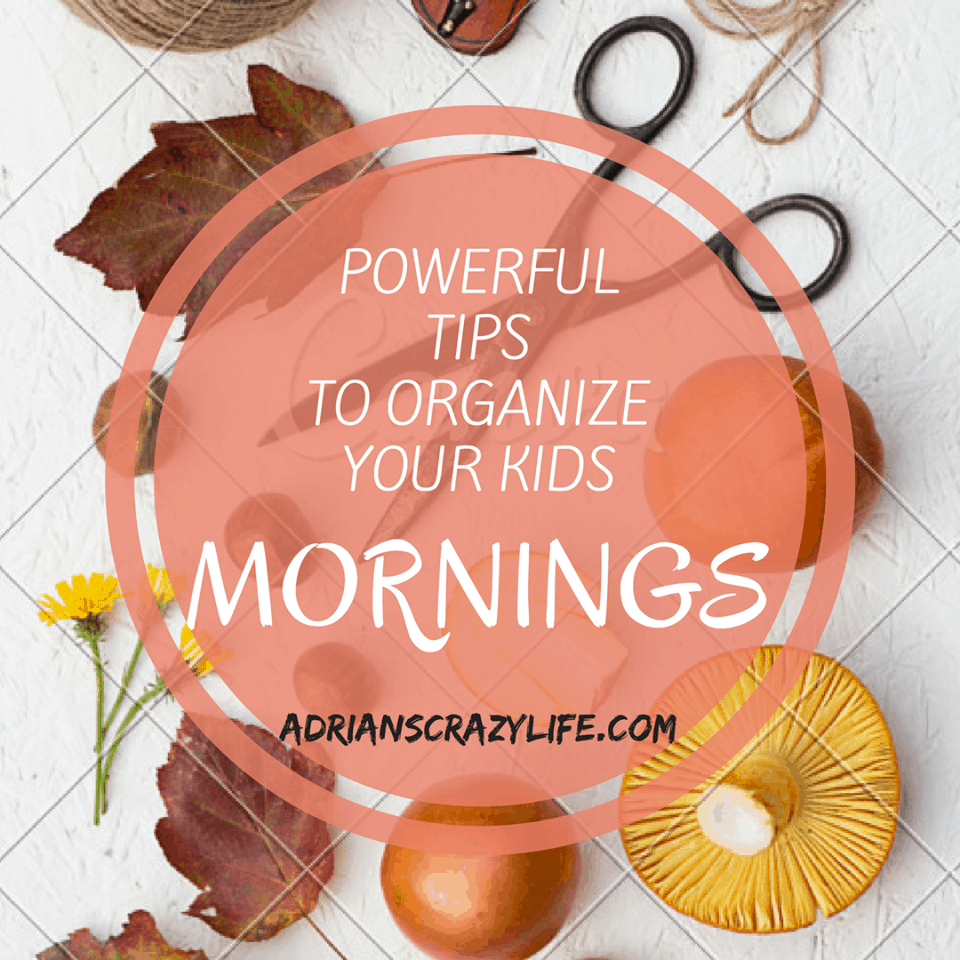 Mornings can be stressful with your kids. These tips will help - A LOT.