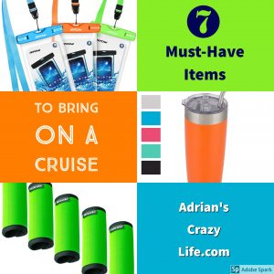 I have some great items you might not have thought of for you cruise