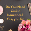 Do you need travel insurance for your very expensive cruise vacation? Hmmm, yes, I think so.